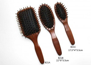 Wooden-Bistle-Cushion-Brush-Set-B21